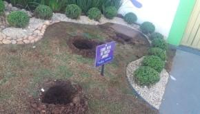As plantas foram arrancadas da frente do Buffet durante a madrugada